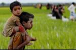 Pengungsi Anak Rohingya di Bangladesh Dalam Kondisi Memprihatinkan
