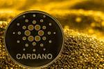 Cardano valoriza 23% enquanto Bitcoin atinge os R$ 50.000