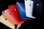 Apple báo lãi cao nhất lịch sử doanh nghiệp Mỹ