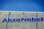 Akzo en partner bouwen 'fotosynthese-fabriek'