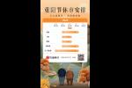 交易提示:因重阳节假期港股下周一休市,沪深股通周五起暂停服务