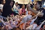 Harga Ayam Mahal, Pedagang Ogah Jualan