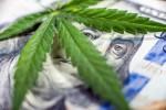 Ein Grund, warum der Marihuana-Boom keine Blase sein könnte
