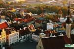 Estonya Hız Kesmiyor! Yeni Bir Kripto Para Borsasına Tam Onay Verildi
