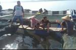 OJK: Penyaluran KUR Sektor Perikanan di Sulut Masih Minim