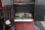 Venezuela LaunchesOne of Greatest FX Devaluations in History
