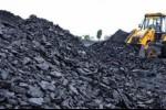 BI: Harga Batu Bara Tahun Ini Diprediksi US$70/Metrik