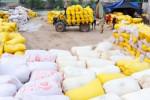 Nóng lòng nhìn giá gạo tăng