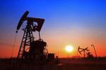 OPEC+ vor längerer Kürzung: Wird die Dividende von Royal Dutch Shell etwa wieder erhöht?