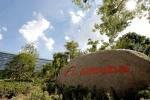 Alibaba & Ant Financial: Bloß noch 108 Mrd. US-Dollar?