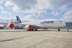 Lufthansa-Aktie mit tiefroten Zahlen! Behält Warren Buffett doch recht?