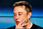 Brand 'Teslaquila' dari Elon Musk Langsung Mendapat Kecaman dari Meksiko