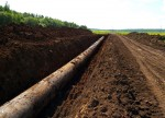 TransCanada eyed by U.S. investor activists - sources