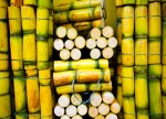 Soft futures; ICE sugar hits 4-week high on Brazil supply worries