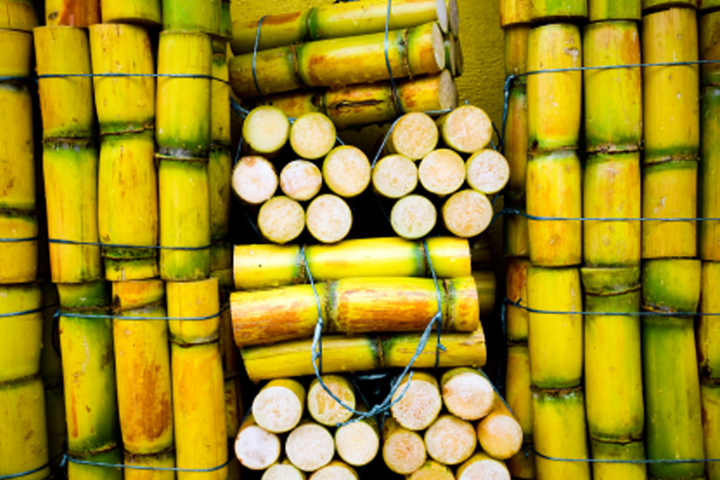 Sugar extends losses to hit 4-week low