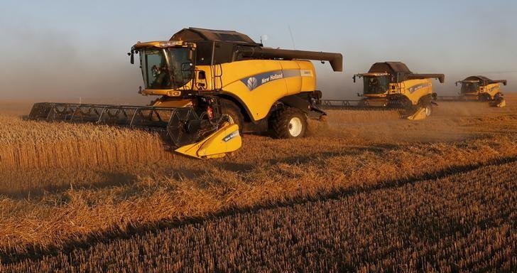 © Reuters. Комбайны убирают пшеницу на поле недалеко от Красноярска