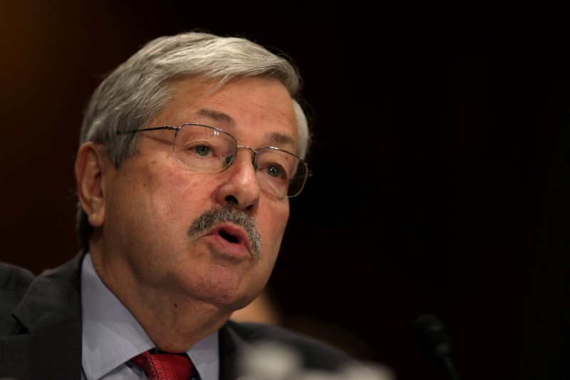 © Reuters. FILE PHOTO - Iowa Governor Terry Branstad before a Senate Foreign Relations Committee confirmation hearing at Capitol Hill in Washington