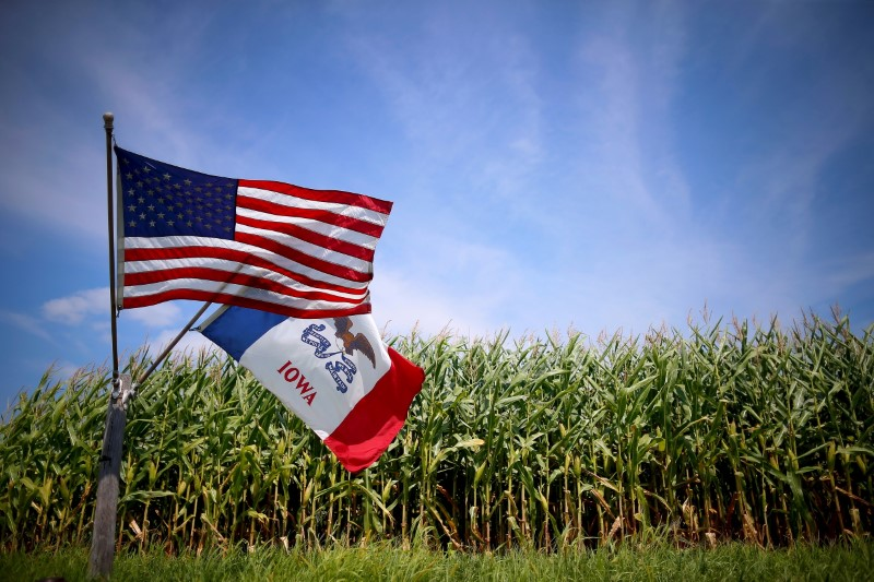 © Reuters. File photo of a U.S. and Iowa state flag are seen next to a corn field in Grand Mound