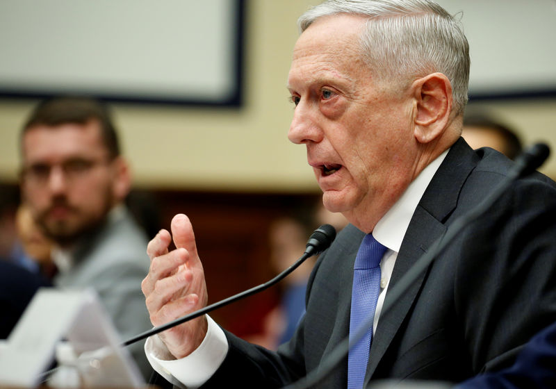 © Reuters. U.S. Defense Secretary Jim Mattis testifies to the House Armed Services Committee in Washington