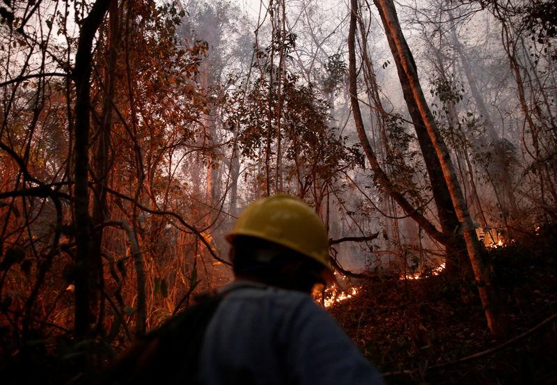 © Reuters. A man walks next to wildfires in Santa Monica near Concepcion