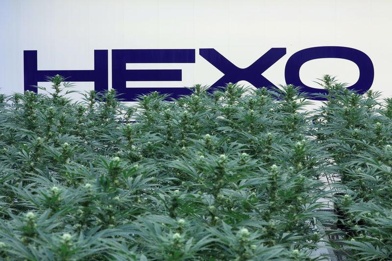 Pot producer Hexo withdraws 2020 forecast, shares slump