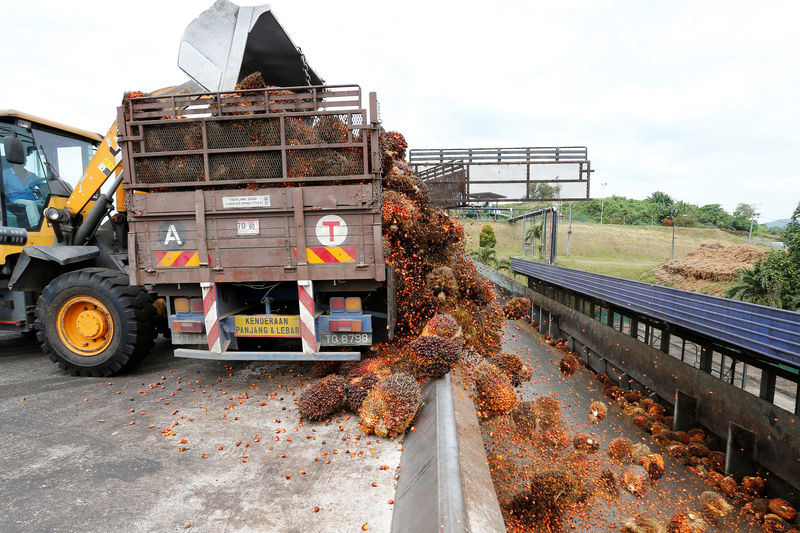Malaysia to cut export duties for crude palm oil in 2020 By Reuters