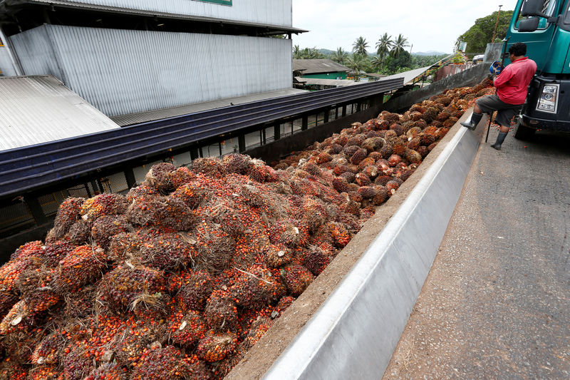 Shun Malaysia, India's palm oil buyers told amid Kashmir standoff By R