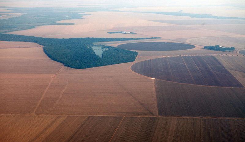 Resultado de imagem para Brasil deve elevar mistura de biodiesel para 15% até 2023; movimento impulsiona demanda por soja