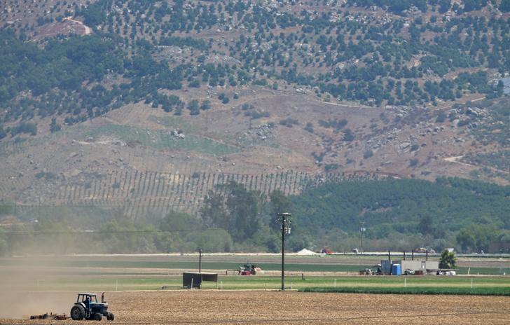 © Reuters. A farmer plows a field in the San Pasqual Valley near Escondido, California
