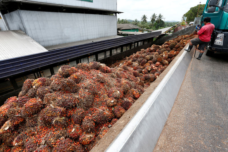 Malaysian palm oil to meet new EU food safety levels by 2021 - ministe