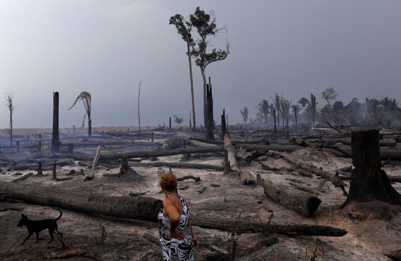 Fires in the Amazon: a barrier to climate change up in smoke