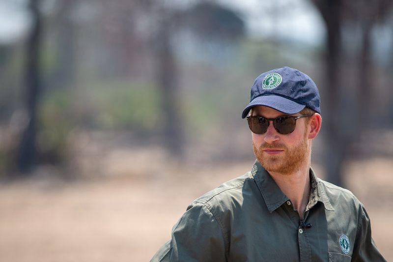 UK press watchdog rejects Prince Harry's complaint over drugged wildli