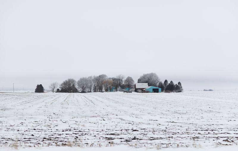 © Reuters. FILE PHOTO: A small rural farm is seen in a field of snow near Nevada, Iowa