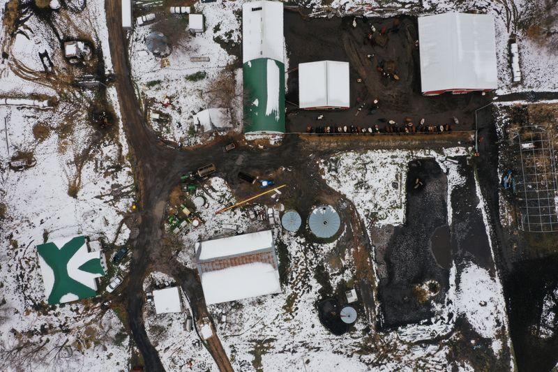 © Reuters. Derrydale Farm in Belle Plaine, Minnesota as Biden campaign pushes for rural voters