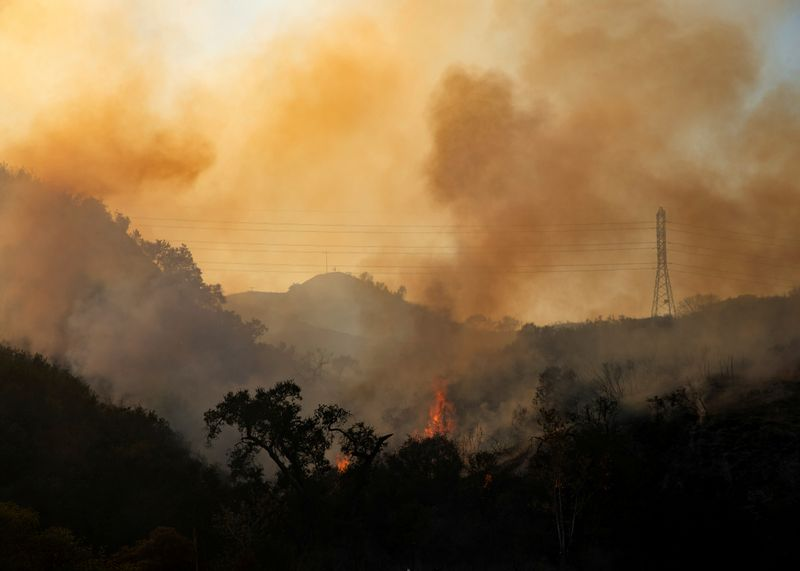 © Reuters. FILE PHOTO: The Bond Fire wildfire continues to burn next to electrical power lines near Modjeska Canyon, California