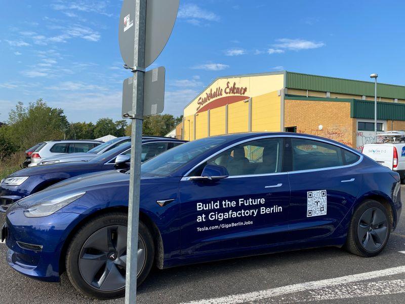 Ssslow down! Sleeping snakes stall Tesla's German gigafactory
