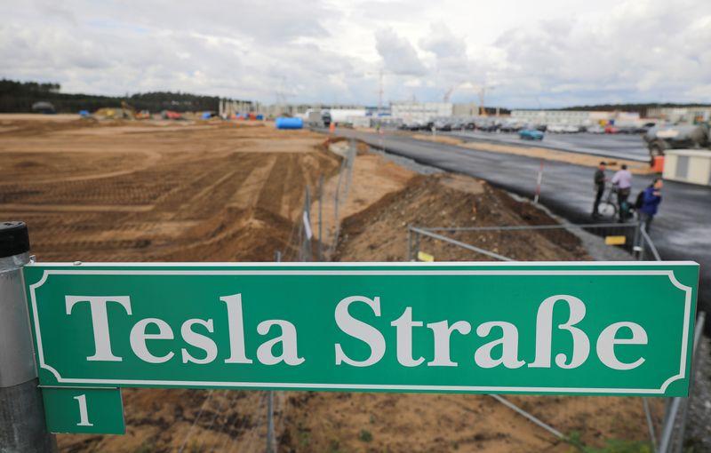 © Reuters. L'HIBERNATION DES SERPENTS FORCE TESLA À SUSPENDRE LA CONSTRUCTION DE SON USINE ALLEMANDE