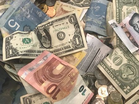 Dollar gets respite as virus surge, Georgia runoffs curb risk sentiment By Reuters