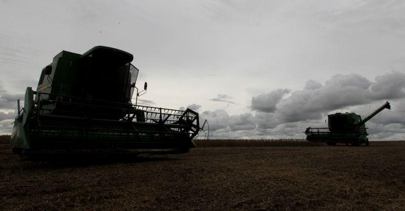 © Reuters. Colheita de soja em Primavera do Leste (MT)