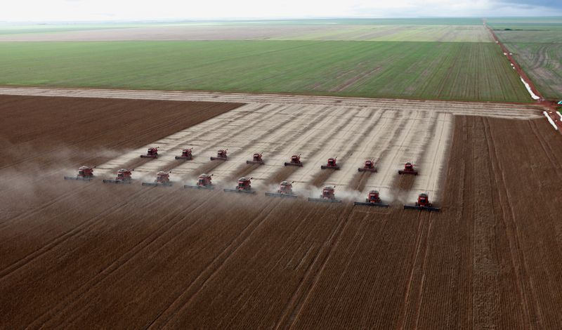 StoneX vê safra de soja 20/21 do Brasil em 132,7 mi t; eleva projeção para milho