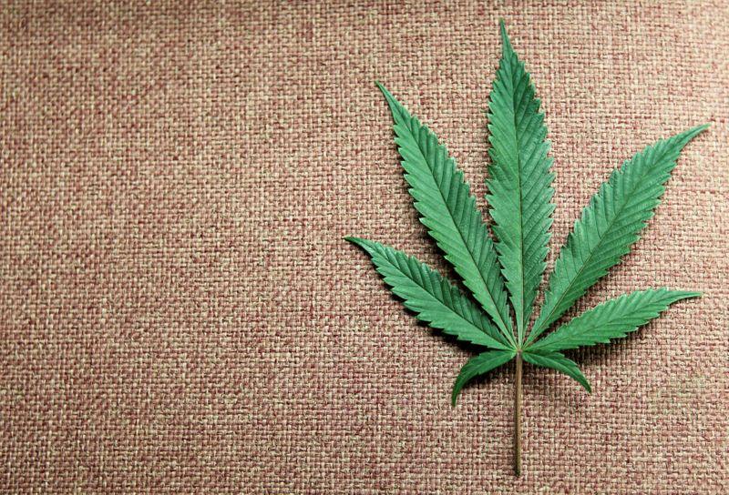 U.S. House of Representatives approves cannabis banking bill