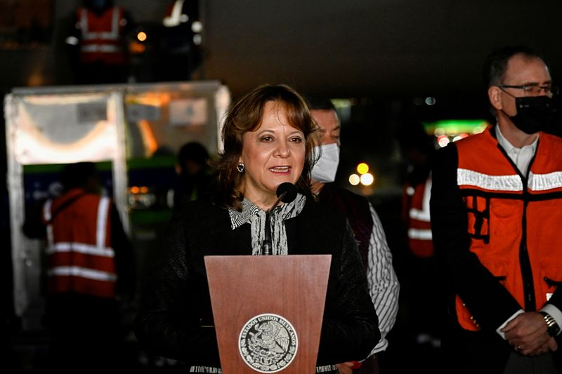 Important to get U.S. vaccine help along border, Mexican official says
