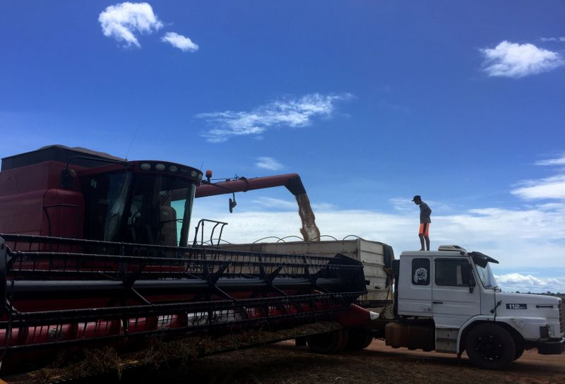 Spies, satellites, subpoenas: soy buyers play hardball with Brazilian farmers
