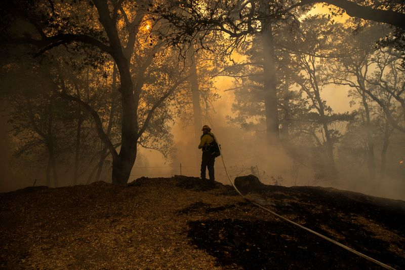Private firefighters fuel tensions while saving California vineyards and mansions