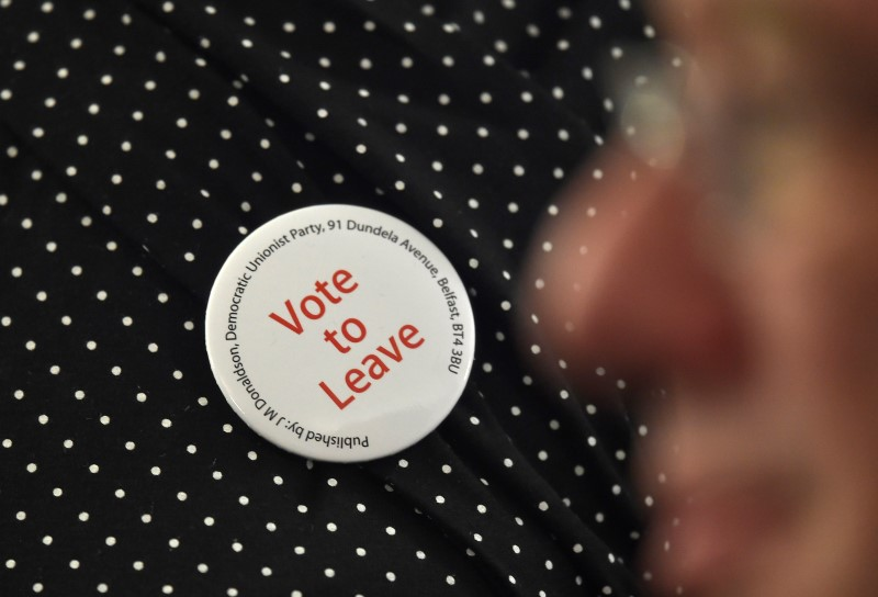 © Reuters. A supporter wears a Vote Leave badge during the final speech of the EU referendum campaign by Nigel Farage, the leader of UKIP, in London