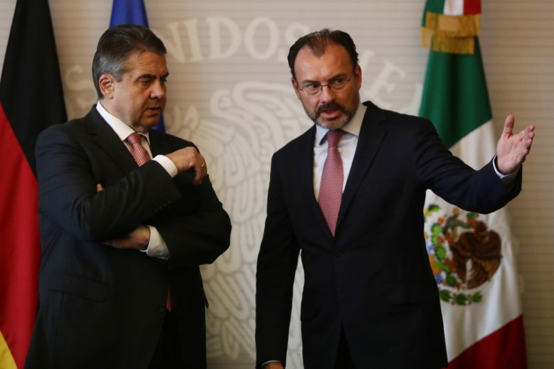 © Reuters. German Foreign Minister Sigmar Gabriel speaks with his Mexican counterpart Luis Videgaray after a private meeting in Mexico City
