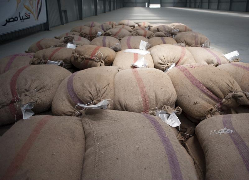 © Reuters. هيئة السلع التموينية المصرية: بذور الخشخاش في شحنة القمح الروماني غير ضارة