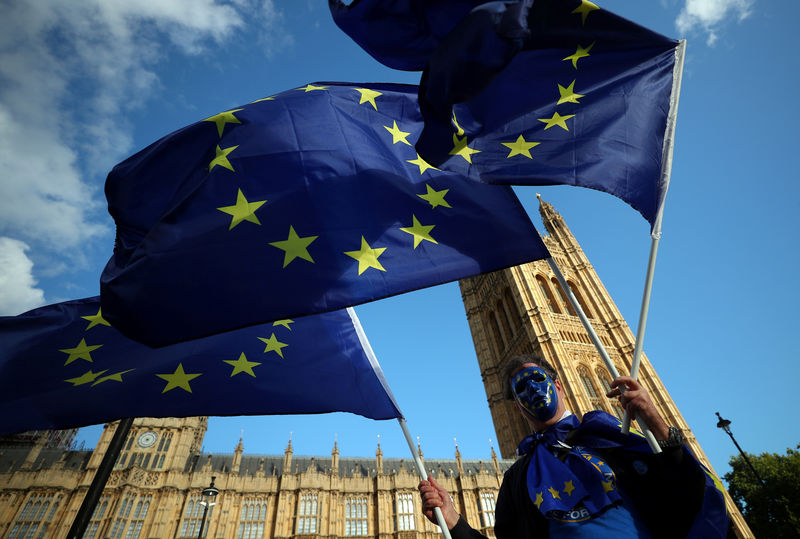 © Reuters. A demonstrator waves European Union flags outside the Houses of Parliament in London