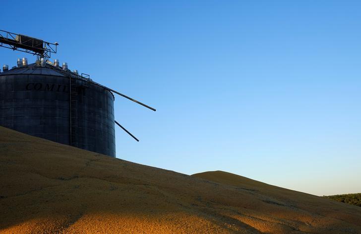 © Reuters. Monte de milho de segunda safra do lado de fora de silos que já estão cheios do grão perto de Sorriso, no Estado do Mato Grosso, Brasil