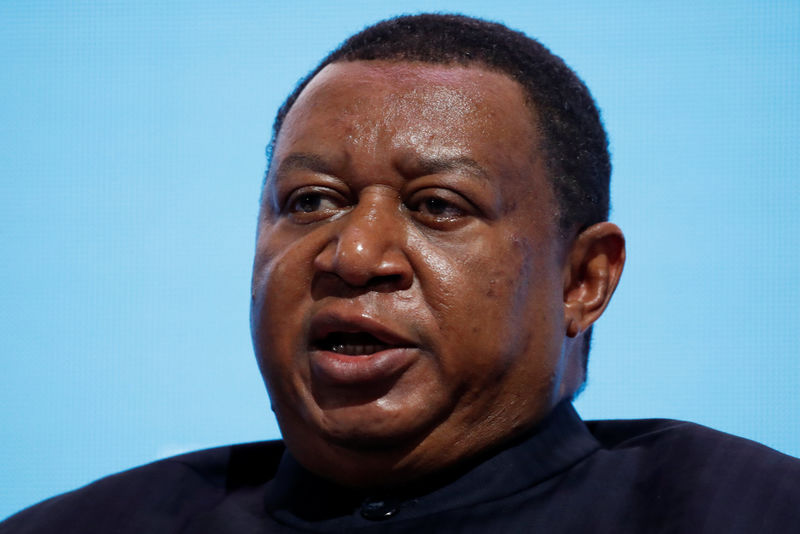 © Reuters. OPEC Secretary General Barkindo speaks during a session of the Russian Energy Week international forum in Moscow